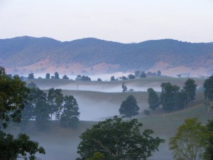 Morning fog settles along Lantz Mountain