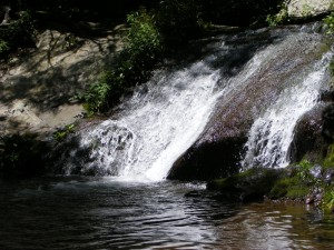 Mill Prong Cascade