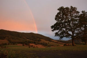 Rainbow over Devil's Backbone